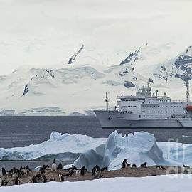 The Antarctic Circle... by Nina Stavlund