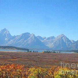 Juan Jiang - The autumn of Grand teton national park