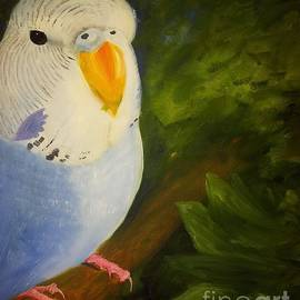 Isabella F Abbie Shores FRSA - The Baby Parakeet - Budgie