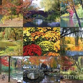 Dora Sofia Caputo Photographic Design and Fine Art - The Beauty of Autumn