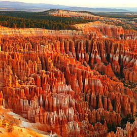 Jeff Swan - THE BEAUTY OF BRYCE CANYON IN THE MORNING