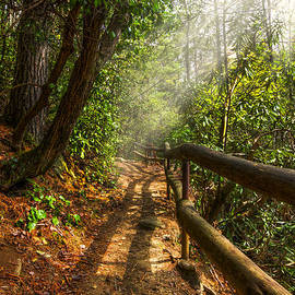 Debra and Dave Vanderlaan - The Benton Trail