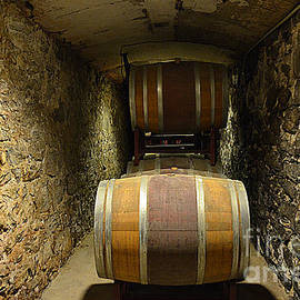 The Biltmore Estate Wine Barrels by Luther Fine Art