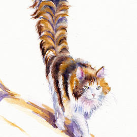 THE calico CAT THAT WALKED BY HIMSELF by Debra Hall