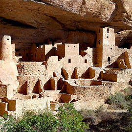 The Cliff Palace Ruin - Mesa Verde by Douglas Taylor