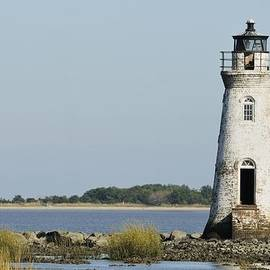 The Cockspur Island Light And Tybee by Bradford Martin