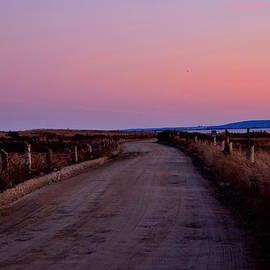 Brian Mooney - The  Dirt Road