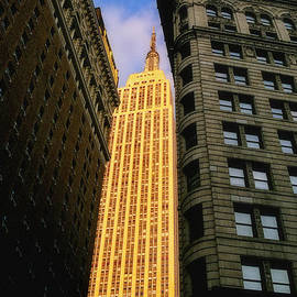 Joann Vitali - The Empire State Building from Herald Square
