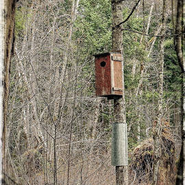 Birdhouse Environment Of Hamilton Marsh  by Roxy Hurtubise