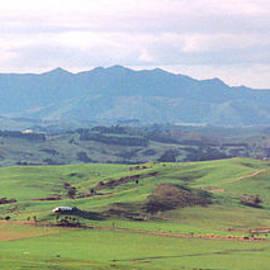 The Family Farm by Mark Dodd