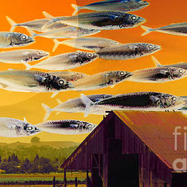Wingsdomain Art and Photography - The Fish Farm 5D24404 Long