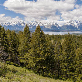 The Grand Tetons From Signal Mountain - Grand Teton National Park Wyoming by Brian Harig