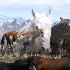 Kae Cheatham - The Herd 2