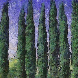 Wendy J St Christopher - The Hushed Poetry of Trees in the Night
