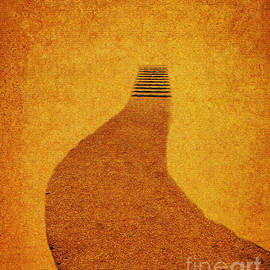 Carol F Austin - The Journey Pathway Minimalism