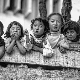 The Kids of Darjeeling by Steve Harrington