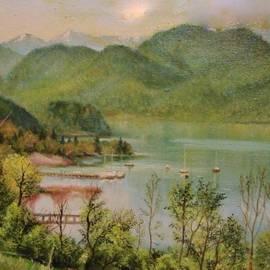 The Lake by Sorin Apostolescu