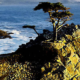 Bob and Nadine Johnston - The Lone Cypress Carmel California
