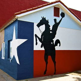 The Lone Star State by John Babis