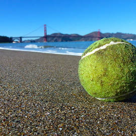 The Lone Tennis Ball by Fabien White