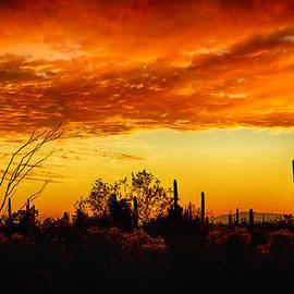 Saija  Lehtonen - The Many Layers of the Desert