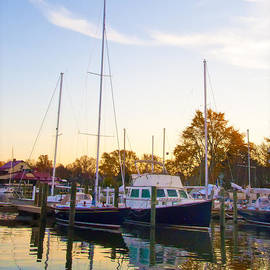Bill Cannon - The Marina at St Michael