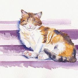 The Naughty Step - Snoozing Cat by Debra Hall