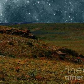 The Night Stars Fell to the Ground by RC DeWinter