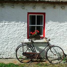 The old bicycle by Joe Cashin