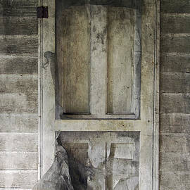 Brian Wallace - The Old Lowman Door