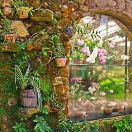 Eti Reid - The orchid window