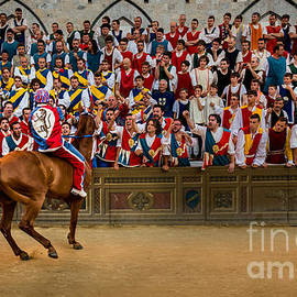 The Palio by Kim Petersen