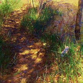 Sharon Ackley - The Path Less Traveled