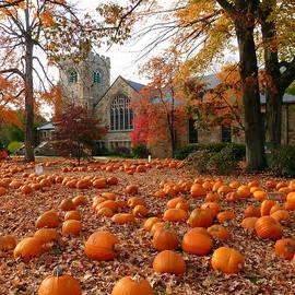 The Pumpkin Season by Elena Alexandrova