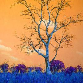 The purple bushes  by Sergei Shnizer
