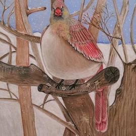 Denisse Del Mar Guevara - The real angry bird