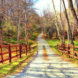 The Road Home - North Carolina by Dan Carmichael