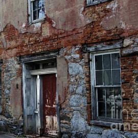 Steven Digman - The Ruins of Art