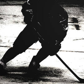 The Shadows of Hockey by Karol Livote