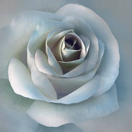 Jennie Marie Schell - The Silver Luminous Rose Flower