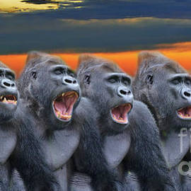 Jim Fitzpatrick - The Singing Gorillas