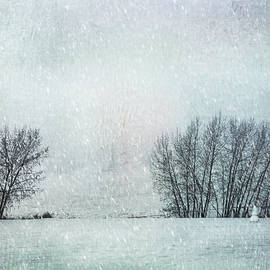 The Snow Sentry by Theresa Tahara