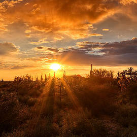 The Sonoran Skies  by Saija  Lehtonen