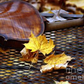Steven Digman - The Sound of November