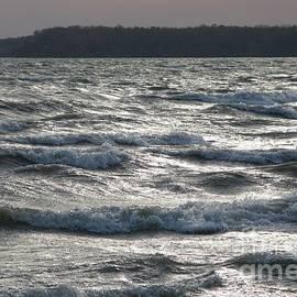 The Steel Sea by Michael Swanson