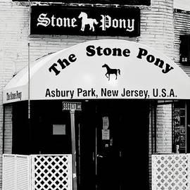 The Stone Pony Asbury Park Nj by Terry DeLuco