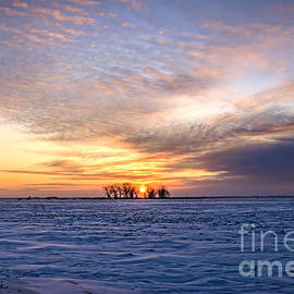 Viktor Birkus - Beautiful sunset in Saskatchewan at Winter time.
