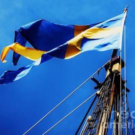 The Swedish Flag by Marcus Dagan