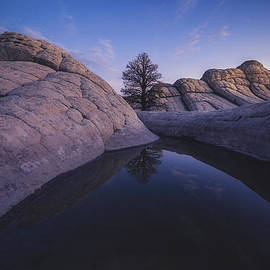Peter Coskun - The Waterhole