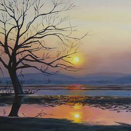 Sue Birkenshaw - The Wetlands